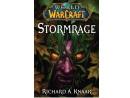 World of Warcraft: Stormrage (ING) Libro