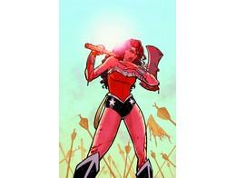Absolute Wonder Woman By A & C v1 (ING/HC) Comic