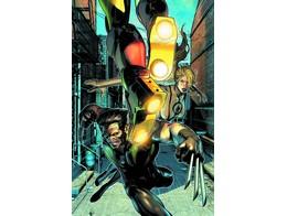 Age of Ultron #8 (ING/CB) Comic