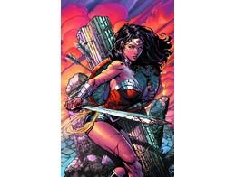 Wonder Woman v7 War Torn (ING/HC) Comic