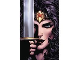 Wonder Woman v1 The Lies (ING/TP) Comic