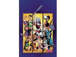 Harley Quinns Gang of Harleys (ING/TP) Comic