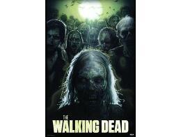 Poster The Walking Dead Drew Struzan
