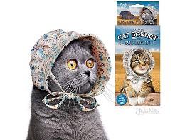 Gorra antigua para gato