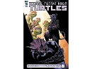 Tmnt Ongoing #78 (ING/CB) Comic