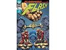 Flash #48 (ING/CB) Comic