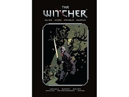 The Witcher Library Edition Vol 1 (HC/ING) Comic