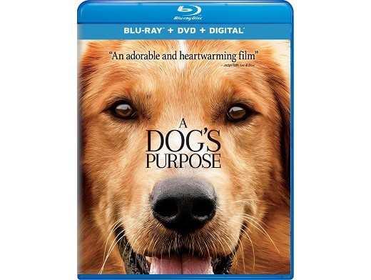 A Dog's Purpose Blu-ray