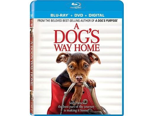 A Dog's Way Home Blu-ray